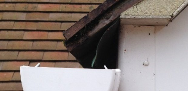 How Far Into The Gutter Should Roof Tiles Project?